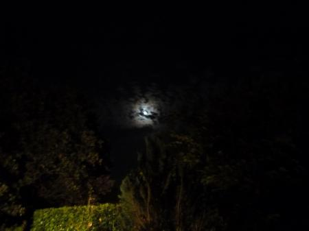 Lune mutine