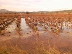 inondation, décrue, photo, journal, écriture,  poésie