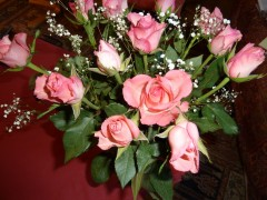 saint Valentin, roses, romantisme, humour, grippe