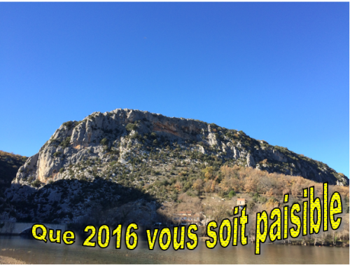 2016, voeux