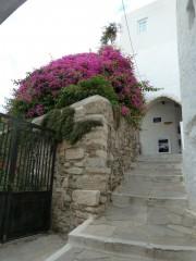 carnets de voyage, les cyclades,îles, grèce